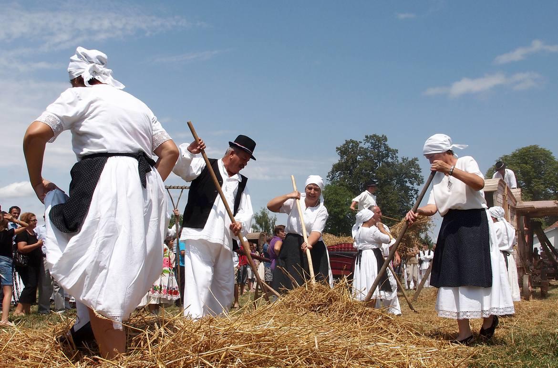 Tradicionalna vršidba žita