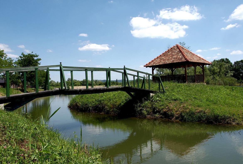 Jezero Bajer Bročice
